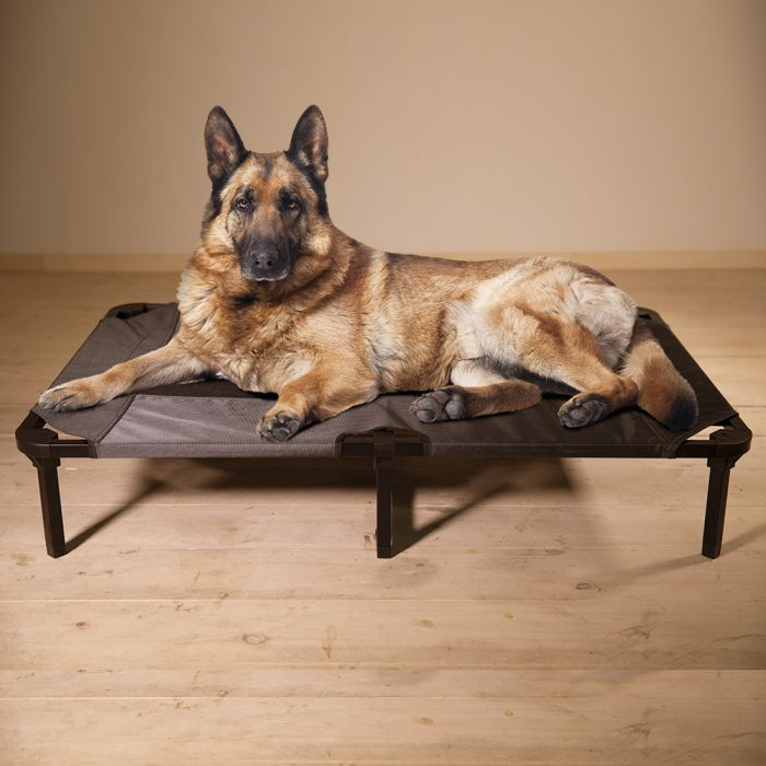 Lucky Dog Elevated Pet Bed, Grey