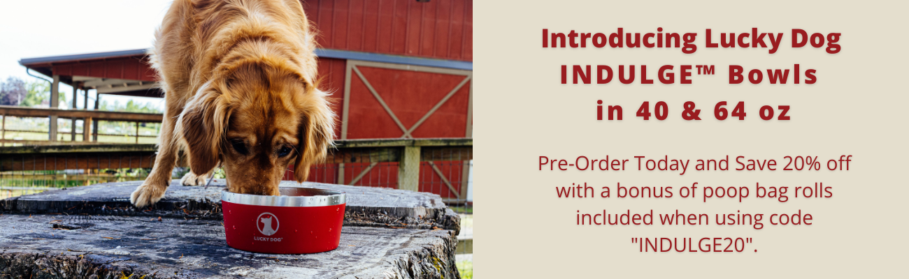 Pre-Order Indulge Bowls Today and Save 20% Off